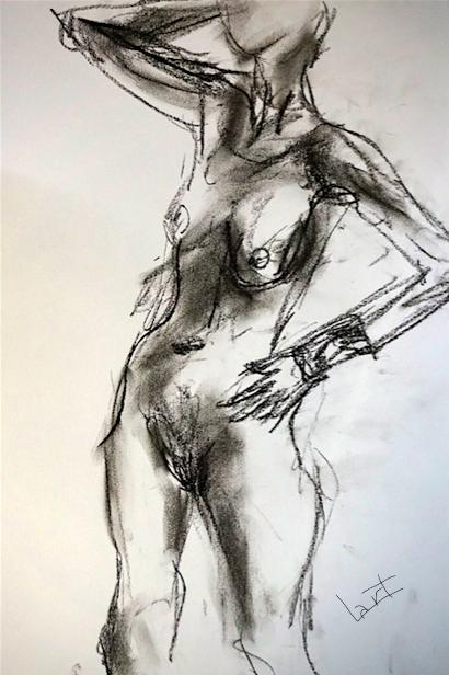 dessin-do-fusain-nov-2016