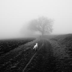 passage-2016-a-2017-brouillard-4