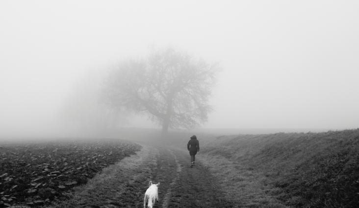 passage-2016-a-2017-brouillard-5