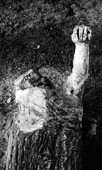 pierre-daragon-processus-sculpture-en-bois-3