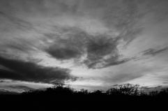 Ciel gris 4