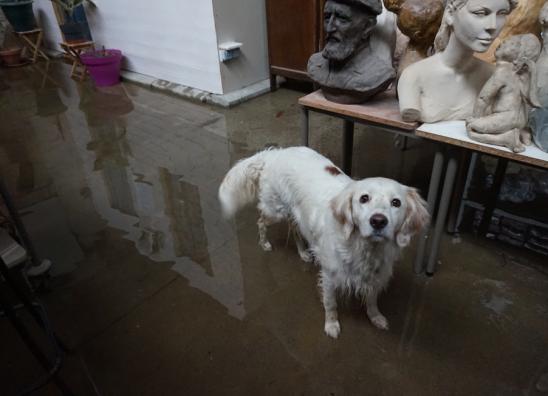 inondation atelier sculpture et Isis