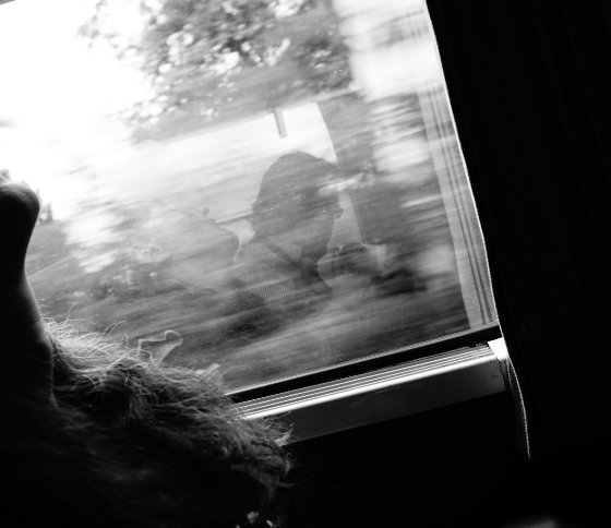 train de retour de Paris 17