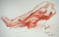 Dessins Lartigue à partir sculpture Rodin 3