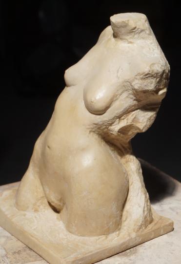 pierre de Tavel Vénus de Muret - Lartigue 5
